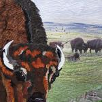 Marcia Shipman - Where the Buffalo Roam (detail)